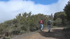 La Gomera, walking people between Igualero and Hermigua Stock Footage