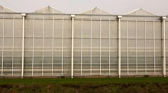 Greenhouses Stock Footage