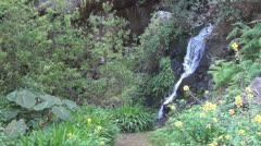 La Gomera, waterfall in Barranco de Monteforte Stock Footage