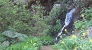 Stock Video Footage of La Gomera, waterfall in Barranco de Monteforte