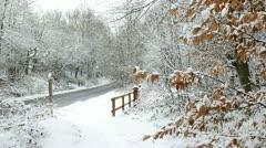 Quiet rural road in winter Stock Footage