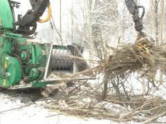 Granulate machine branch Stock Footage