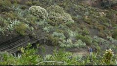 Stock Video Footage of Hikers in La Caldera de Bandama in volcanic island Gran Canaria