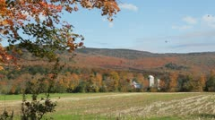 Autumn maple leaves falling in farm field, Vermont - stock footage