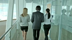 Business partners Stock Footage