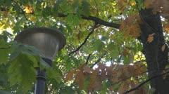 Beautiful public lamp Stock Footage
