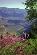 Classic grand canyon Stock Photos