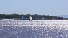 Sails On Dazzling Water Stock Footage