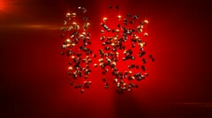 Ruby countdown from 10 to 1 Stock Footage