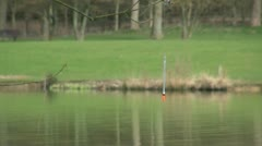 Fishermans Fishing Line and Float Caught on a Branch Stock Footage