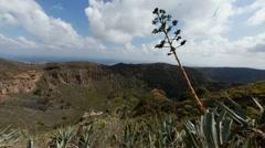 Stock Video Footage of La Caldera de Bandama in volcanic island Gran Canaria timelapse Full HD