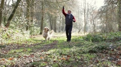 Man walking dog through woods Stock Footage