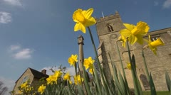 Spring with daffodils and Church in Oxfordshire, Looking up. Stock Footage
