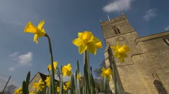 Spring with daffodils and Church in Oxfordshire, Looking up. 2 Stock Footage