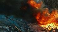 Wilderness Fire Stock Footage
