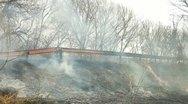 Stock Video Footage of Grass Fire On Roadside