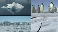 Stock Video Footage of Antarctica compilation