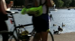 258 ducks Hyde Park London Stock Footage