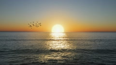 Beautiful Golden Ocean sunset with flock of birds - stock footage