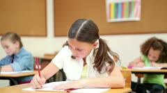Stock Video Footage of Smiling pupil working with her notebook
