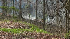 Controlled Burn 4 HD Prescribed Fire Mammoth Cave National Park Stock Footage