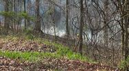 Stock Video Footage of Controlled Burn 4 HD Prescribed Fire Mammoth Cave National Park