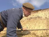 Thatcher working on a reed roof Stock Footage