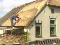 Thatcher working on a reed roof 02 Stock Footage