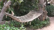 Hammock swinging between palm trees on a tropical beach. Stock Footage
