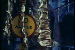 Pressed Peking Duck hanging in a stall in Hong Kong - stock footage
