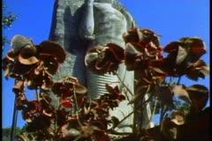 Standing Buddha of Sri Lanka Stock Footage