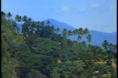 Sri Lanka, the mountains, Shangri La like feeling, wide shot Stock Footage