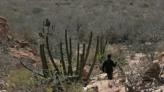 Hiking in Desert of Baja California Stock Footage