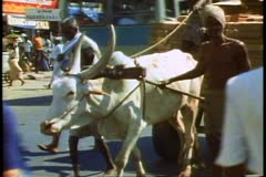A Brahma bull pulls a cart on a busy street in Madras, India Stock Footage