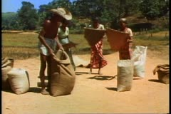 Stock Video Footage of Sri Lanka, three women tossing rice to remove the chafe