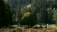 Landscapes in Mountains, Austria Stock Footage