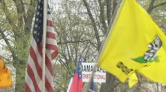 Tea Party Protest Stock Footage