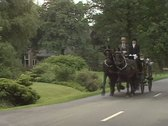Stock Video Footage of friesian horse drawn carriage landauer towards camera