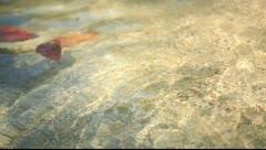 Krabi, Thailand - Beach Clear Water Sand 05 Stock Footage