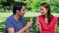 Happy couple clinking their glasses of white wine - stock footage