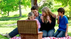 Family picnicking together Stock Footage