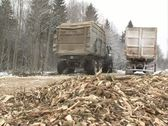 Wood branch chips fuel Stock Footage