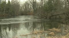Salmon river Stock Footage