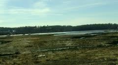 Pan Across New England Swamp Stock Footage