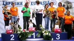Several women stand on pedestal with their dogs at International Dog Show Stock Footage