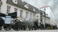 Horse-driven carriage stands at Hofburg palace near with Stephansdom in Vienna Stock Footage