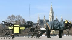 Horse-driven carriage stand on street in front of Rathaus Stock Footage