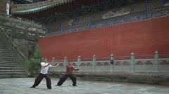 Two young men doing Tai Chi exercises - stock footage