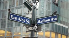 Pigeons on 42nd and Madsion street sign New York City Stock Footage