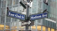 Stock Video Footage of Pigeons on 42nd and Madsion street sign New York City